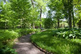 Osu Botanical Gardens by The Missouri Botanical Garden Has Such A Variety Of Trees Here Is