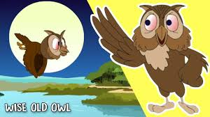 wise old owl animated nursery rhyme for children cartoon songs