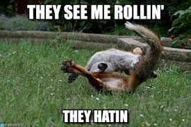 Meme Fox - they see me rollin rolling fox meme on memegen