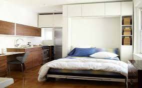 Ikea Cabinets Bedroom by Bedroom Interesting Rack Storage With Cozy Murphy Bed Ikea For