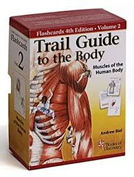 Human Body Muscles Images Amazon Com Trail Guide To The Body Flash Cards 5th Edition Volume