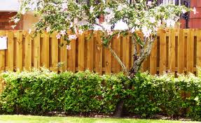halloween fences wood fences title goes here andes fence inc