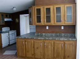 Kitchen Cabinets For Mobile Homes Kitchen Idea - Mobile homes kitchen designs