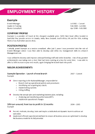 Profile On Resume How Much Employment History On Resume Resume For Your Job