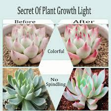 600w full spectrum led growing light plants veg flower medical