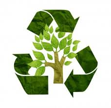 win win recycling saving one tree at the time
