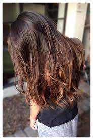 hair highlight for asian balayage highlights asian hair hairs picture gallery