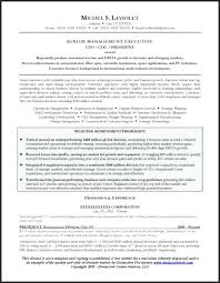 cfo resume exles cfo resume template resume exles images resume sle for a