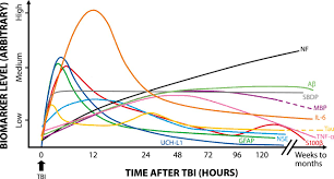 biomarkers of traumatic brain injury temporal changes in body
