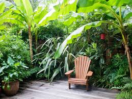 small garden border ideas simple tropical garden design colourful tropical garden design