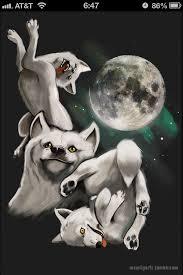 Three Wolf Shirt Meme - tactical frivolity unofficial garoumush wiki fandom powered by wikia