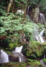 Black Forest Waterfall Window 1 4602 Best Waterfalls Images On Pinterest Landscapes Nature And