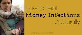 kidney infection how to treat kidney infections naturally growing up triplets