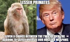 Baboon Meme - image tagged in trump baboon imgflip