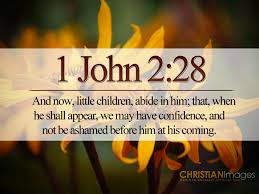 thanksgiving bible verses kjv and now little children abide in him that when he shall appear