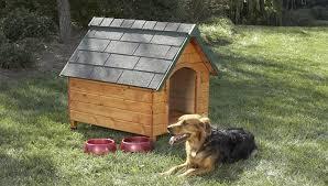 Free Dog House Plans Best Free Dog House Plans Elegant Pitbull