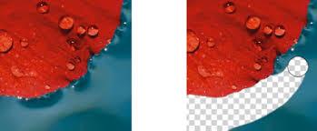 corel photo paint help erasing image areas