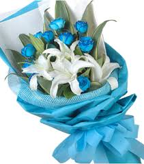 blue roses delivery send 12 blue roses bouquet to panga delivery 12 blue roses