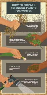 329 best gardening images on pinterest garden tips gardening