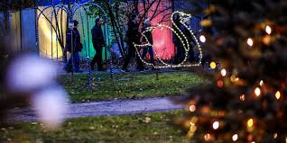 Detroit Zoo Night Lights by Potter Park Zoo Lights Up For The Holidays