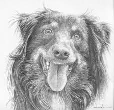 how to draw dogs course u2014 online art lessons