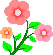 Flower Image Image Pink Flower Gif Bible Wiki Fandom Powered By Wikia