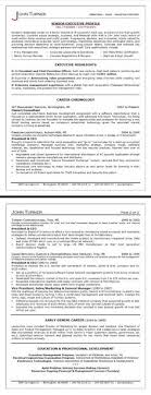 Call executive resumes  amp  job search coaching  Full service executive resume services   cover letters  resume distribution  online branding  Pinterest