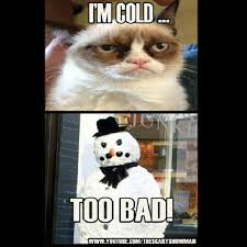 Funny Cold Meme - funny cold memes 28 images best 25 cold weather funny ideas on