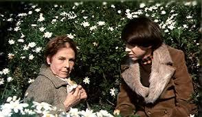 Seeking Maude Cult Friday Harold And Maude 1971 Idealist Junk