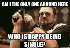 the only one around here funny memes about being single