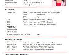 resume for beginners 0 nardellidesign com