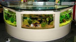 aquarium designs to beautify interior house
