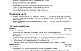 resume summary exles software engineer resume sle summary 7a engineering exle