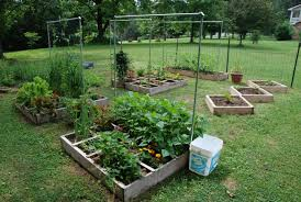 Landscaping Small Garden Ideas by Backyard Vegetable Garden Eartheasycom Solutions For Sustainable