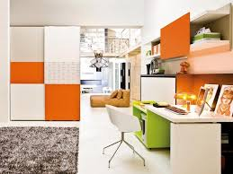 outstanding colorful office design with fur rug and