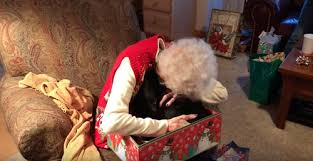 what to get an elderly woman for christmas this elderly woman got the best christmas and reaction is