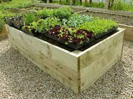 Raised Garden Beds Kits Elegant Raised Vegetable Garden Beds Kits Premier Raised Garden