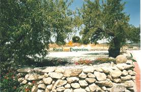 rural country house for sale in mula 5ha of almond trees rural