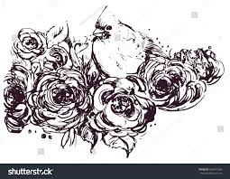 hand drawing sketch vector lovely cardinal stock vector 564611566