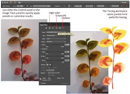 image trace in illustrator u2014 a tutorial and guide adobe