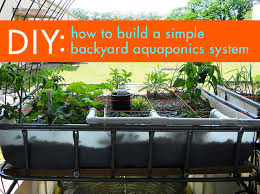 How To Build A Backyard Pool by Diy Everything You Need To Know To Build A Simple Backyard