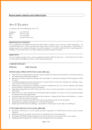 Key Competencies Resume 11 Sample Resume For Experienced It Professional Azzurra Castle
