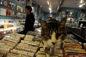 record stores ante meridiem