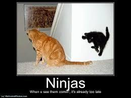 Funny Motivational Memes - motivational posters funny ninjas 3 by pepion11 on deviantart