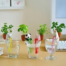 plant home decor ceramic creature mini backpack bonsai pot decoration chuppon self