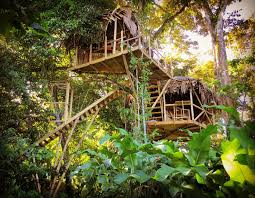 inside the incredible luxury tree house where guests sleep in the