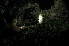 angel appears in the garden