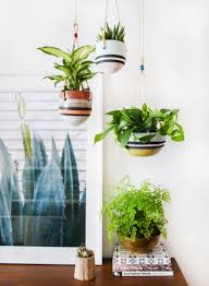 an indoor hanging garden with anthropologie a how to u2013 amber