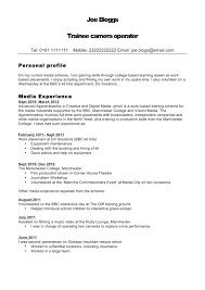 Best Format Resume by New Professional Cv Format 2012 5 Custom Essay Papers For