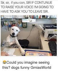Dog Funny Meme - 25 best memes about dog funny dog funny memes